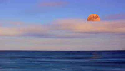 Photograph - Moonrise by Carol Eade