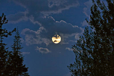 Photograph - Moonrise I by Albert Seger