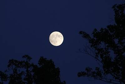 Photograph - Moonrise Labor Day by Kathryn Meyer