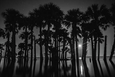 Photograph - Moonrise Over Flooded Lake by Stefan Mazzola