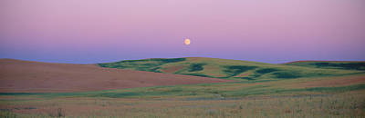 Bucolic Scenes Photograph - Moonrise Over Pea Fields, The Palouse by Panoramic Images