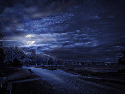 Photograph - Moonrise Over Pymatuning Lake by Linda Unger