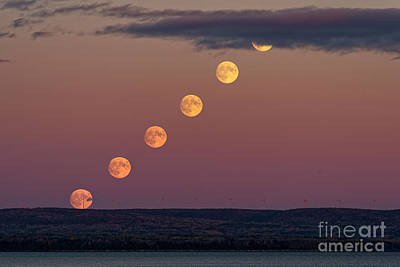 Moonrise Sequence Art Print by Colin Woods