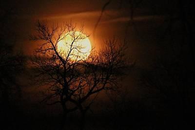 Moonrise Silhouette Art Print by John Ohm