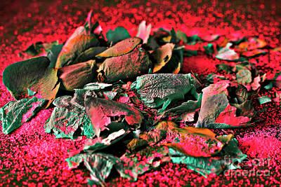 Moonrose On Red Rosemoon Art Print