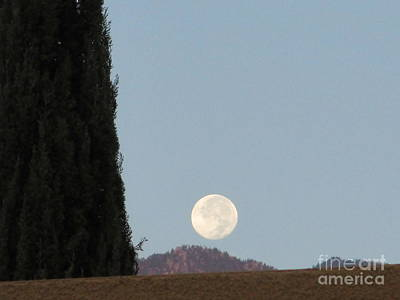 Photograph - Moonset 1 by Randall Weidner