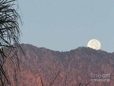 Photograph - Moonset 5 by Randall Weidner