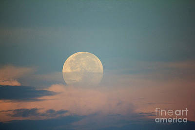 Photograph - Moonset by Bob Hislop