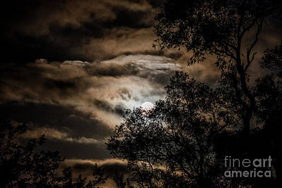 Photograph - Moonset Canberra by Angela DeFrias