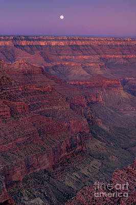 Photograph - Moonset From Cape Royal North Rim Grand Canyon Nation by Dave Welling