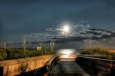 Photograph - Moonshadow by Phil Mancuso