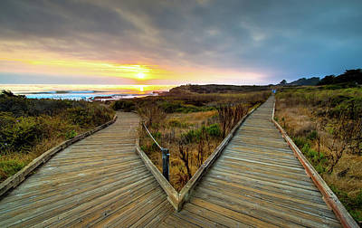 Photograph - Moonstone Beach Path by R Scott Duncan