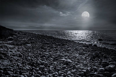 Photograph - Moonstone Beach by Robin-Lee Vieira