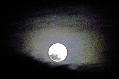Photograph - Moonstruck 12 by Ron Kandt