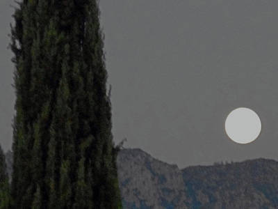 Photograph - Moonstruck 4 by Ron Kandt