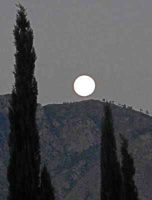Photograph - Moonstruck 5 by Ron Kandt