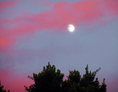 Photograph - Moonstruck 6 by Ron Kandt