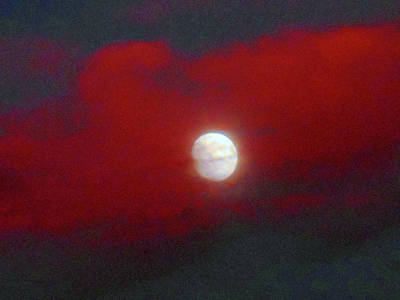 Photograph - Moonstruck 8 by Ron Kandt