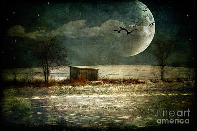 Winter Night Photograph - Moonstruck by Lois Bryan