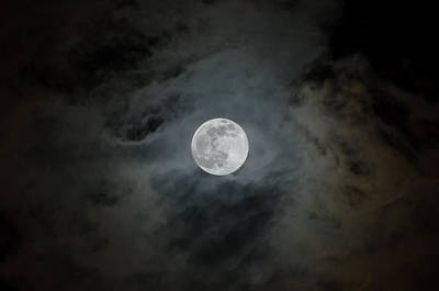 Luna Photograph - Moonstruck by Rich Leighton