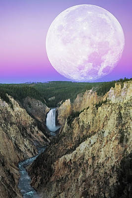 Yellowstone Photograph - My Purple Dream by Edgars Erglis