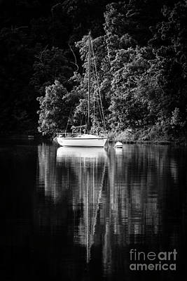 Photograph - Moored 2 by Dennis Hedberg