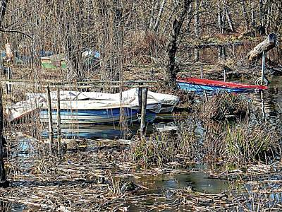 Chiusi Photograph - Moored Among The Trees Lago Di Chiusi by Dorothy Berry-Lound