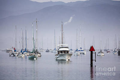 Photograph - Moored Boats In Morro Bay by Sharon Foelz
