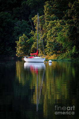 Photograph - Moored by Dennis Hedberg
