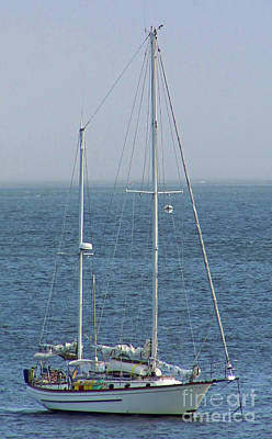 Photograph - Moored In Matanzas Bay by D Hackett