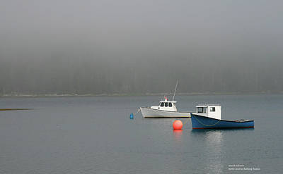 Photograph - Moorings by Mark Alesse