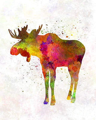 Moose Watercolor Painting - Moose 03 In Watercolor by Pablo Romero