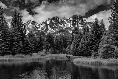 Art Print featuring the photograph Moose At Schwabacher's Landing by Gary Lengyel