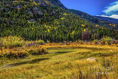Photograph - Moose Country by Jon Burch Photography