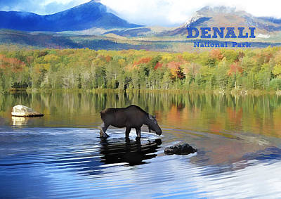 Denali Painting - Moose In Denali National Park Lake Text Denali by Elaine Plesser