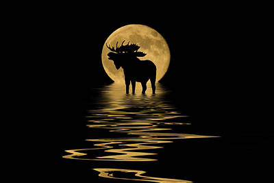 Dark Mixed Media - Moose In The Moonlight by Shane Bechler