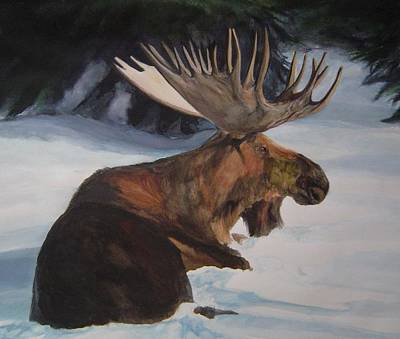 Moose In Winter Art Print by Susan Tilley