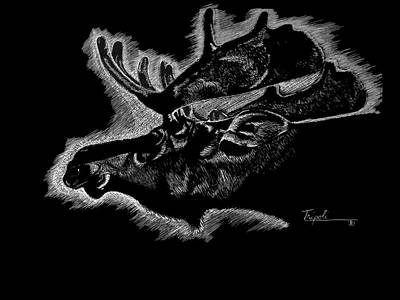 Drawing - Moose by Lawrence Tripoli