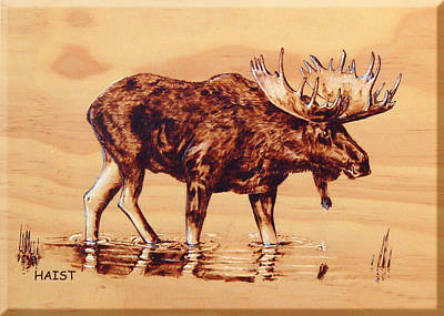 Pyrography - Moose Marsh by Ron Haist