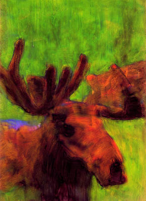 Moose Moments Art Print