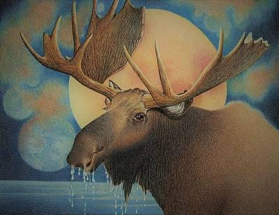 Moose Drawing - Moose by Rita Niblock