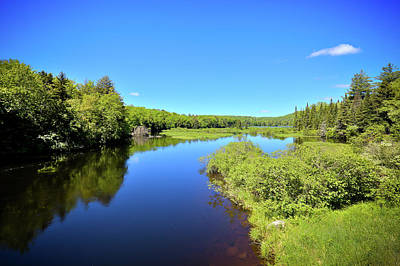 Photograph - Moose River Calm by David Patterson