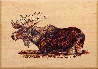 Pyrography - Moose by Ron Haist