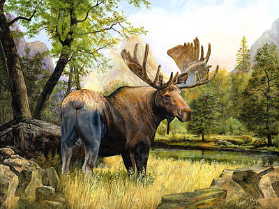 Painting - Moose Study by Robert May
