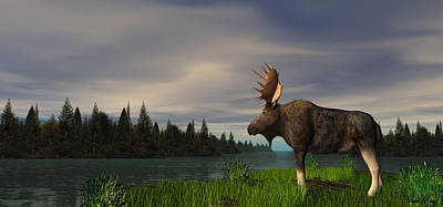 Digital Art - Moose by Walter Colvin