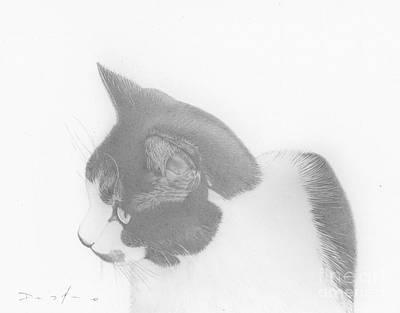 Moozie Cat Drawing Art Print