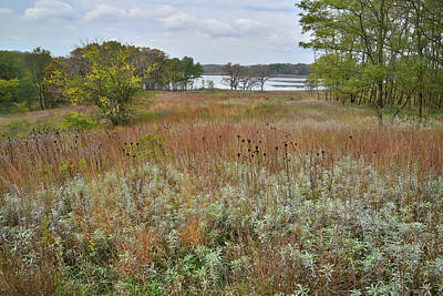 Photograph - Moraine Hills Prairie by Ray Mathis