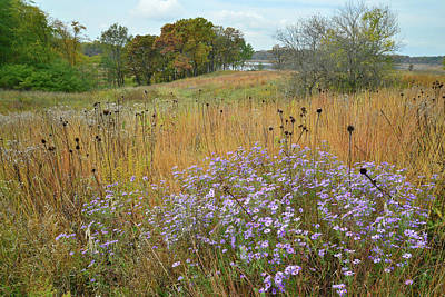 Photograph - Moraine Hills State Park by Ray Mathis