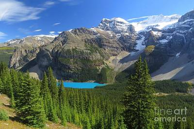 Photograph - Moraine Lake Valley by Frank Townsley