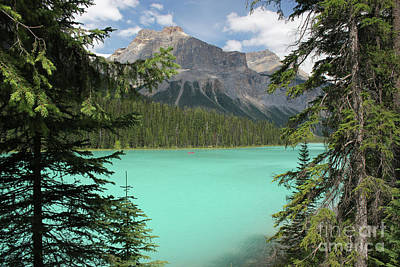 Photograph - Moraine Lake  by Wilko Van de Kamp